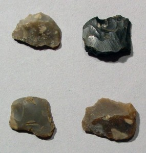 steel and flint - flint chips