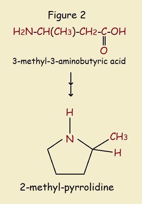 nitrogen heterocycles