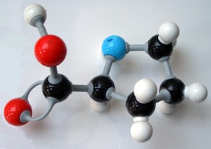 Chemical Bond - Proline - Ball and Stick Model Wikimedia CCA 2.5 by Peter Murray-Rust.