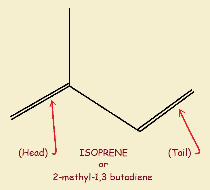 isoprene