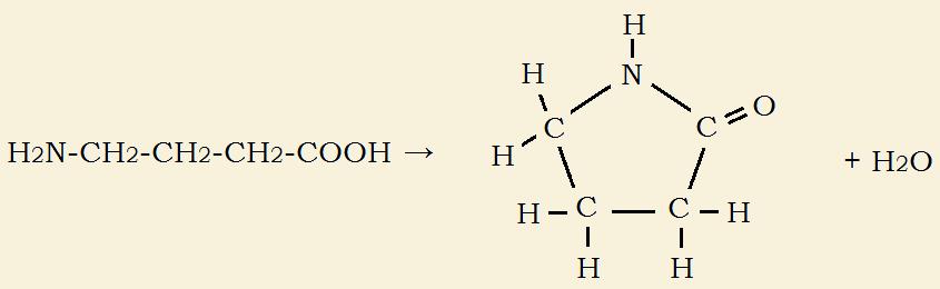 lactam