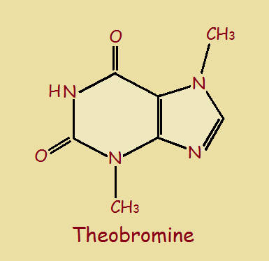 chocolate alkaloid theobromine