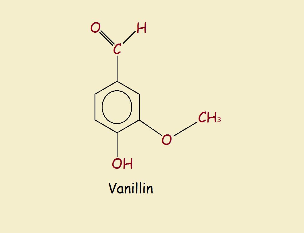 vanilla and vanillin