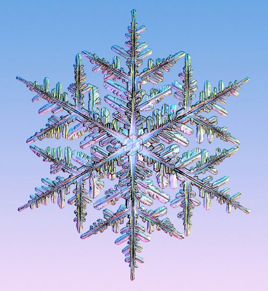 Symmetry in a Snowflake