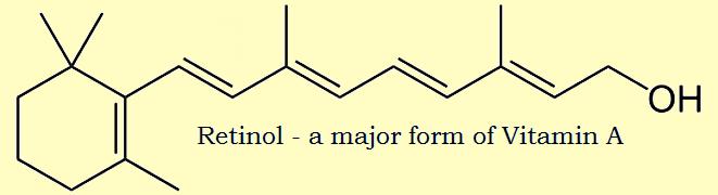 beef liver retinol (vitamin a)