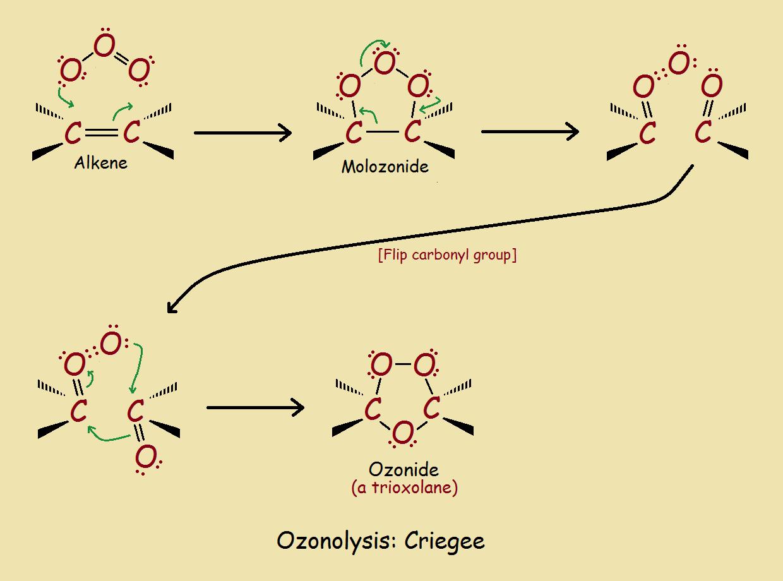 organic ozonides mechanism