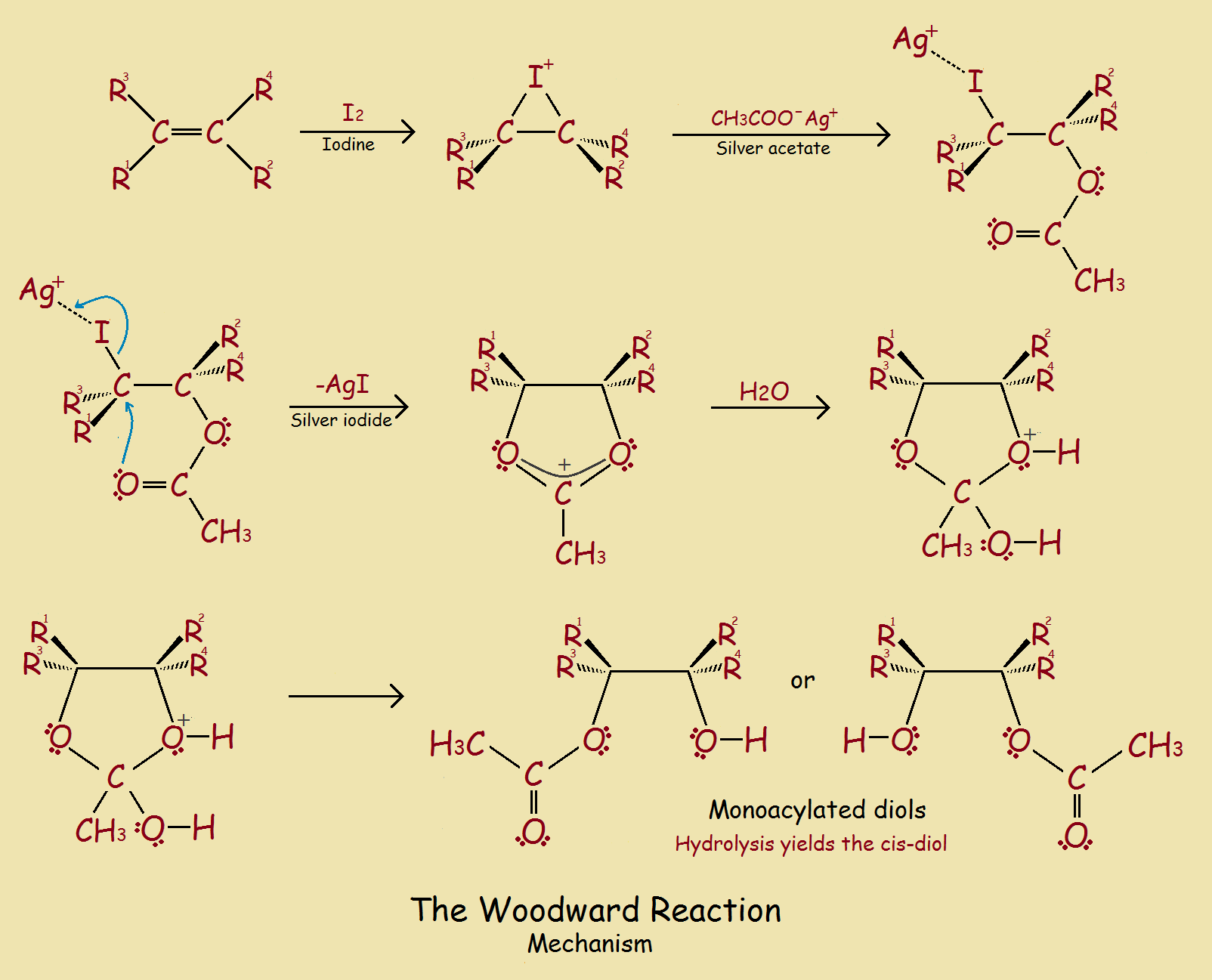 Woodward reaction mechanism
