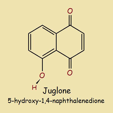 Juglone